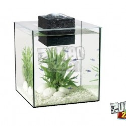 ZunboZoo Florárium Kocka Magas Üvegből