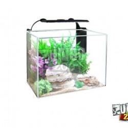 ZunboZoo Florárium Kocka Alacsony Üvegből