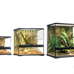 ZunboZoo Florárium Kocka forma Üvegből