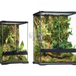 ZunboZoo Florárium Magas forma Üvegből